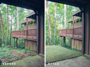 backyard before after